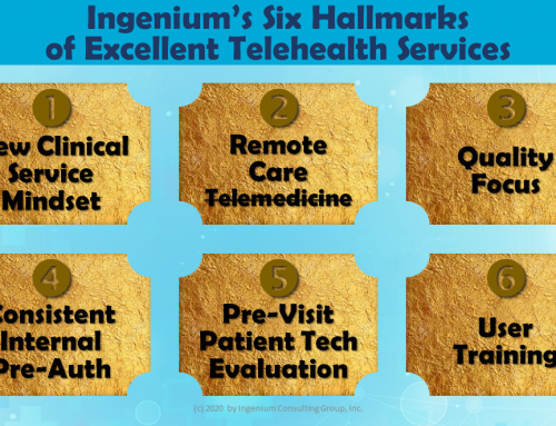 The 6 Hallmarks of Excellent Telehealth Services