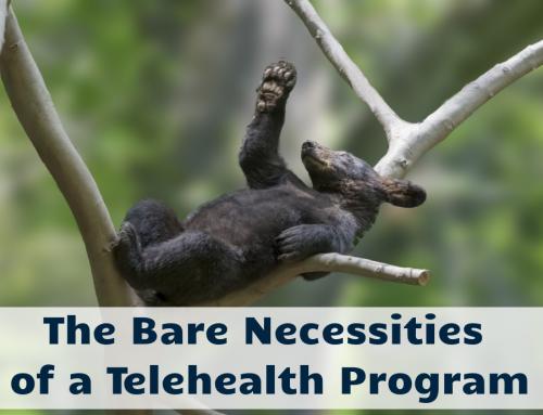 The Bare Necessities of a Telehealth Program